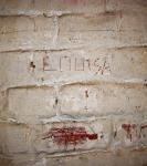 7. Inscriptions diverses