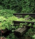 In het spoor van de Shoah in Polen_54
