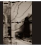 Studiereis 2012: Auschwitz I