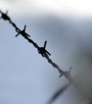 Studiereis 2013: Indrukken van Auschwitz
