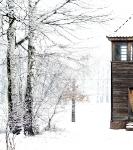 Studiereis 2013: Indrukken van Birkenau