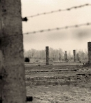 Studiereis naar Auschwitz-Birkenau